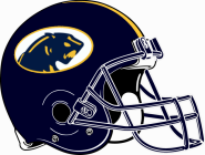 DeWitt   Panthers