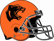 Stockbridge Panthers